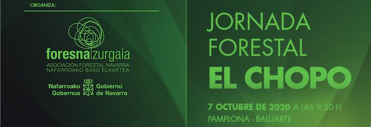 La Asociación Forestal de Navarra organiza la Jornada Forestal sobre El Chopo Cesefor