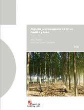 Populus ×euramericana 'I-214' en Castilla y León